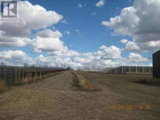 Photo 14: 54131 Township Road 542 in Rural Yellowhead County: Agriculture for sale : MLS®# A1074150