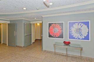 Photo 24: 209 208 HOLY CROSS Lane SW in Calgary: Mission Condo for sale : MLS®# C4113937