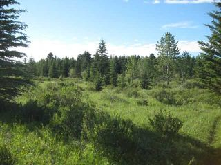 Photo 1: 12 KMS NORTH ON COCHRANE in COCHRANE: Rural Rocky View MD Rural Land for sale : MLS®# C3526638