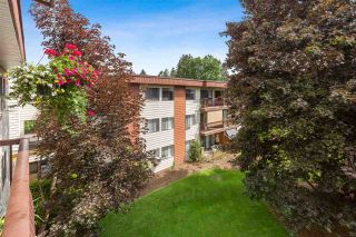 """Photo 3: 227 1909 SALTON Road in Abbotsford: Central Abbotsford Condo for sale in """"FOREST VILLAGE"""" : MLS®# R2583765"""