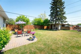 Photo 19: 704 Renfrew Street in Winnipeg: River Heights South Residential for sale (1D)  : MLS®# 1813941