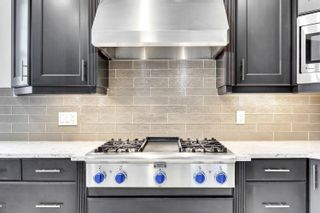 Photo 19: 7821 SASKATCHEWAN Drive in Edmonton: Zone 15 House for sale : MLS®# E4250399