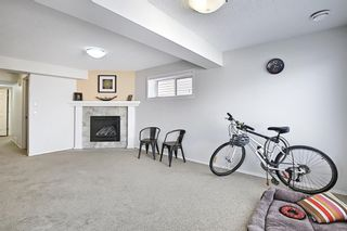 Photo 21: 205 Panora Close NW in Calgary: Panorama Hills Detached for sale : MLS®# A1132544