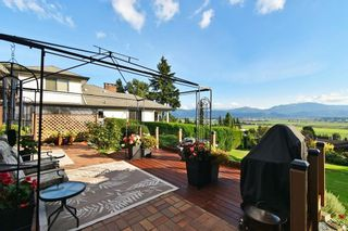 Photo 1: 35006 MARSHALL Road in Abbotsford: Abbotsford East House for sale : MLS®# R2625801