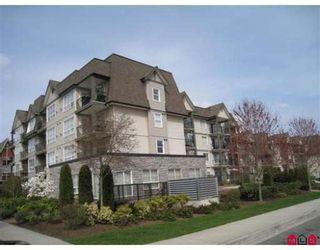 """Photo 10: 315 12083 92A Avenue in Surrey: Queen Mary Park Surrey Condo for sale in """"TAMARON"""" : MLS®# F2908555"""