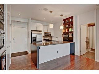 Photo 9: 105 414 MEREDITH Road NE in Calgary: Crescent Heights Condo for sale : MLS®# C4050218