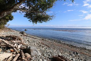 Photo 59: 7212 Austins Pl in : Sk Whiffin Spit House for sale (Sooke)  : MLS®# 851445