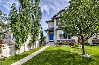 Photo 26: 254 CRAMOND Circle SE in Calgary: Cranston Detached for sale : MLS®# A1014365