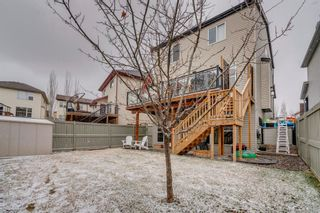 Photo 35: 9 Copperfield Point SE in Calgary: Copperfield Detached for sale : MLS®# A1100718