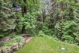 Photo 20: 24712 110 Avenue in Maple Ridge: Albion House for sale : MLS®# R2587423