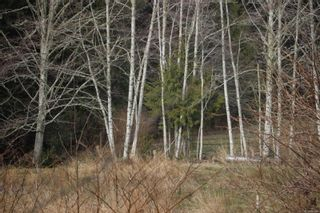 Photo 16: 2858 Phillips Rd in : Sk Phillips North House for sale (Sooke)  : MLS®# 867290