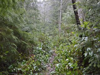 Photo 12: 1309 Gorge Harbour Rd in : Isl Cortes Island Land for sale (Islands)  : MLS®# 868715