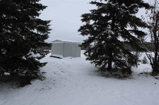 Photo 29: 4702 53 Avenue: Thorsby House for sale : MLS®# E4220799