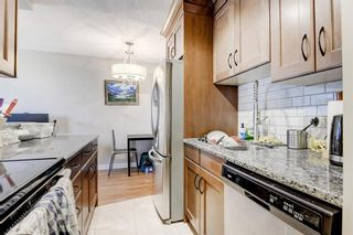 Photo 6: 403 507 57 Avenue SW in Calgary: Windsor Park Apartment for sale : MLS®# A1146991