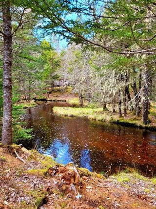 Photo 22: Lots Hectanooga Road in Mayflower: 401-Digby County Vacant Land for sale (Annapolis Valley)  : MLS®# 202118142