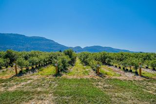 Photo 16: 1851 MARION Road in Abbotsford: Sumas Prairie House for sale : MLS®# R2622143
