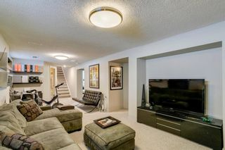 Photo 33: 16 Harley Road SW in Calgary: Haysboro Detached for sale : MLS®# A1092944