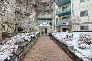 Photo 24: 110 11 DOVER Point SE in Calgary: Dover Apartment for sale : MLS®# A1118273