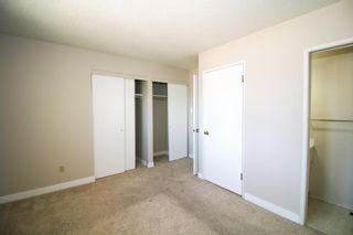 Photo 11: 16812 96 Avenue in Edmonton: Zone 22 House for sale : MLS®# E4246591