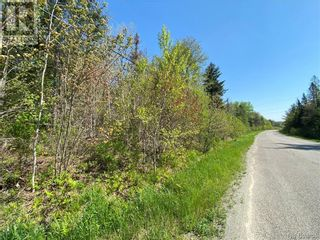 Photo 35: 5264 Rte 770 in Rollingdam: Vacant Land for sale : MLS®# NB058269