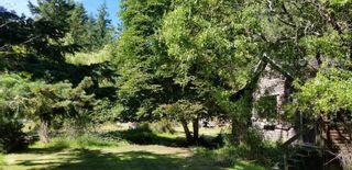 Photo 31: 428 CAMPBELL BAY Road: Mayne Island House for sale (Islands-Van. & Gulf)  : MLS®# R2596415