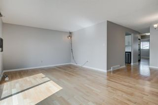 Photo 11: 450 19 Avenue NW in Calgary: Mount Pleasant Semi Detached for sale : MLS®# A1036618