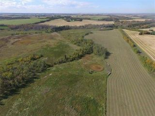 Photo 3: SW COR TWP RD 534 & RR 222: Rural Strathcona County Rural Land/Vacant Lot for sale : MLS®# E4251108