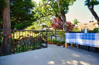 Photo 35: 3640 Blenkinsop Rd in : SE Maplewood House for sale (Saanich East)  : MLS®# 879297