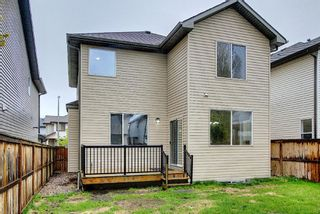 Photo 35: 56 Cranwell Lane SE in Calgary: Cranston Detached for sale : MLS®# A1111617
