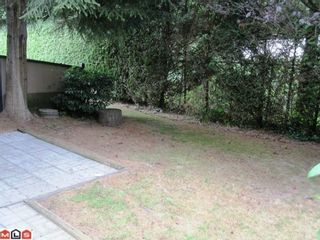 """Photo 6: 26 3015 TRETHEWEY Street in Abbotsford: Abbotsford West Townhouse for sale in """"BIRCH GROVE TERRACE"""" : MLS®# F1022443"""