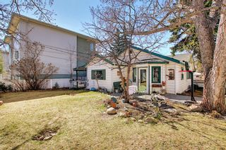 Photo 42: 116 Bowers Street NE: Airdrie Detached for sale : MLS®# A1095413