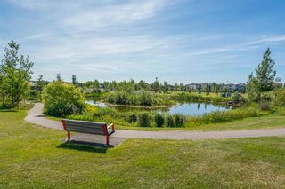 Photo 21: 135 Doverglen Place SE in Calgary: Dover Detached for sale : MLS®# A1058125