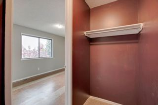 Photo 36: 23 SUNVALE Court SE in Calgary: Sundance Detached for sale : MLS®# C4297368
