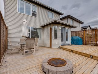 Photo 30: 87 Chapman Circle SE in Calgary: Chaparral House for sale : MLS®# 	C4064813