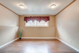 Photo 24: 15003 97 Avenue in Edmonton: Zone 22 House for sale : MLS®# E4254922