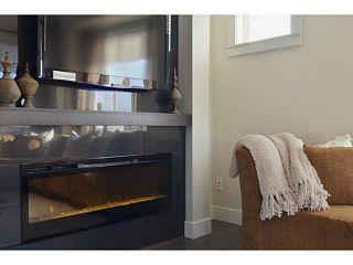 Photo 9: 53 10151 240 Street in Maple Ridge: Albion Home for sale ()  : MLS®# V1089172