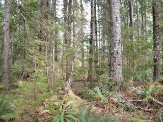 Photo 16: W1/2 SW&NW1/4 Quatsino Sound in : NI Port Hardy Land for sale (North Island)  : MLS®# 866764