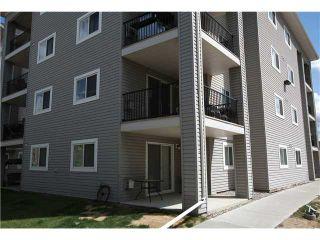 Photo 3: 4202 4975 130 Avenue SE in CALGARY: McKenzie Towne Condo for sale (Calgary)  : MLS®# C3617112