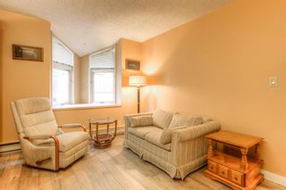 Photo 24: 301 1229 Cameron Avenue SW in Calgary: Lower Mount Royal Apartment for sale : MLS®# A1095141