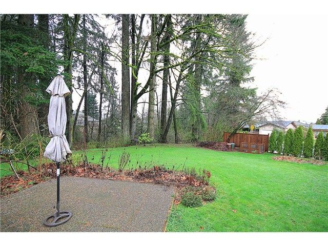 Photo 10: Photos: 21340 EXETER Avenue in Maple Ridge: West Central House for sale : MLS®# V995864
