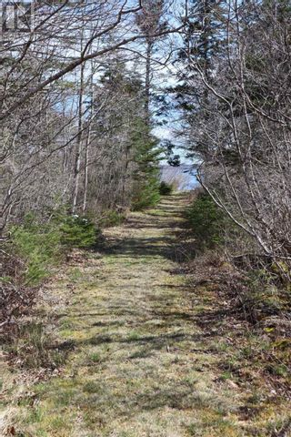 Photo 6: Lot Long Cove Road in Port Medway: Vacant Land for sale : MLS®# 202110309