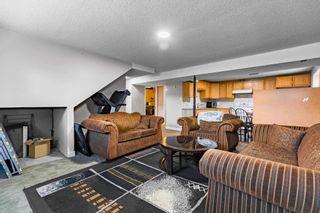 Photo 26: 4011 19 Avenue in Edmonton: Zone 29 House for sale : MLS®# E4248497