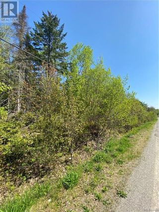 Photo 5: 5264 Rte 770 in Rollingdam: Vacant Land for sale : MLS®# NB058269