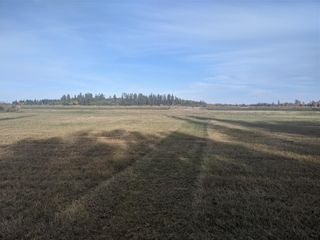 Photo 4: 119 government Road in Moosehorn: RM of Grahamdale Residential for sale (R19)  : MLS®# 202124208