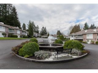 """Photo 2: 4 33123 GEORGE FERGUSON Way in Abbotsford: Central Abbotsford Townhouse for sale in """"The Britten"""" : MLS®# R2238767"""