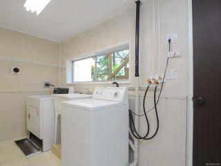 Photo 29: 8662 Whelan Rd in MERVILLE: CV Merville Black Creek House for sale (Comox Valley)  : MLS®# 730163