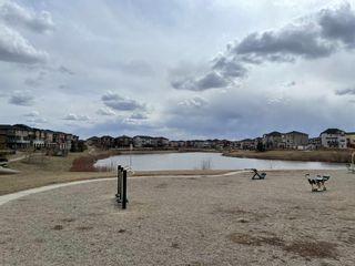 Photo 26: 303 15 Saddlestone Way NE in Calgary: Saddle Ridge Apartment for sale : MLS®# A1099242