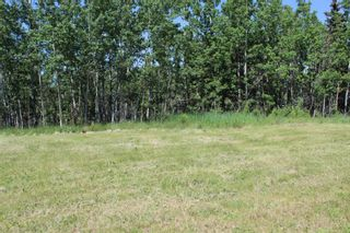 Photo 17: 25255 Bearspaw Place in Rural Rocky View County: Rural Rocky View MD Land for sale : MLS®# A1013795