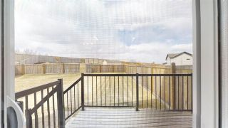 Photo 18: 3636 9 Street in Edmonton: Zone 30 House Half Duplex for sale : MLS®# E4240538