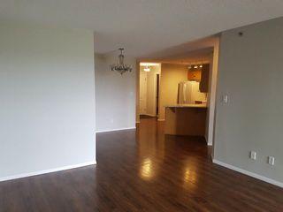 Photo 9: 201 9640 105 Street in Edmonton: Zone 12 Condo for sale : MLS®# E4264251